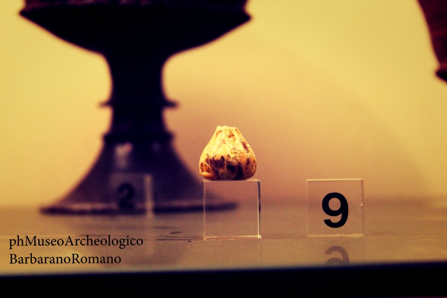 Museo_Archeologico_Barbarano_Romano.Francesca.Pontani