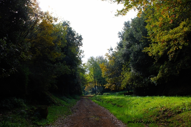 Castel-D'Asso-Francesca.Pontani.1.jpg