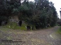 tuscania_necropoli_etrusca_delle_scalette_francesca.pontani
