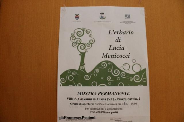 erbario_lucia_menicocci_villa_san_giovanni_in_tuscia_francesca-pontani.jpg