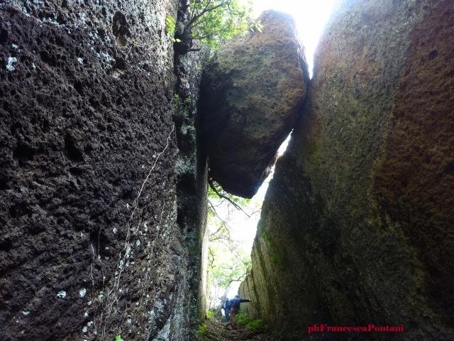scalinata_greppo_castello_parco_marturanum_tuscia_rupestre