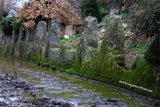 tuscania_tomba_degli_scranni_francesca-pontani.jpg